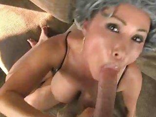 granny swallow