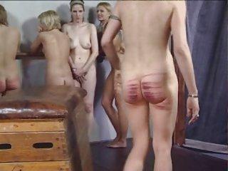 Freaks of Nature 146 Schwere Rohrstock für Ballett- Mädchen
