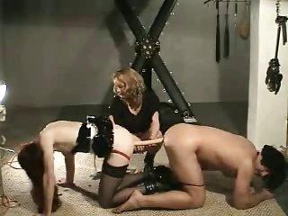 Femdom - Bi Sissy Humiliation