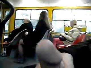 trolleybus 3
