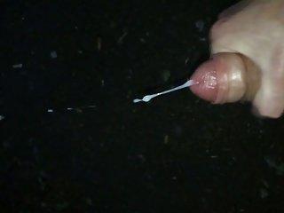 Sperm 1