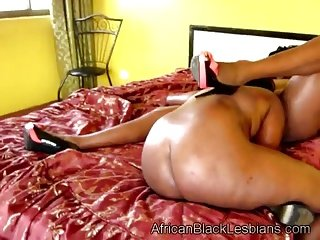 African lezzie tongues big stacked lover